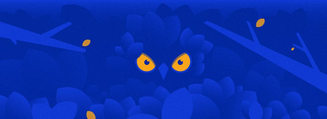 owl-hiding