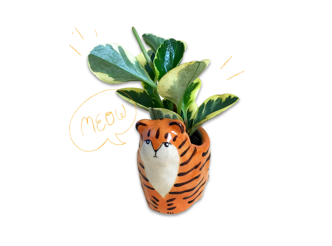 Small planter in the shape of a tiger