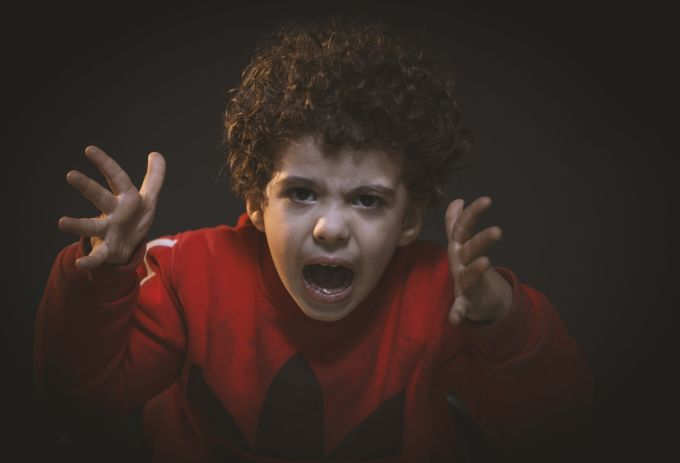 Aggressive Behavior in Children with Autism