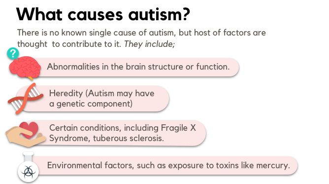 what causes autism genetic infographic