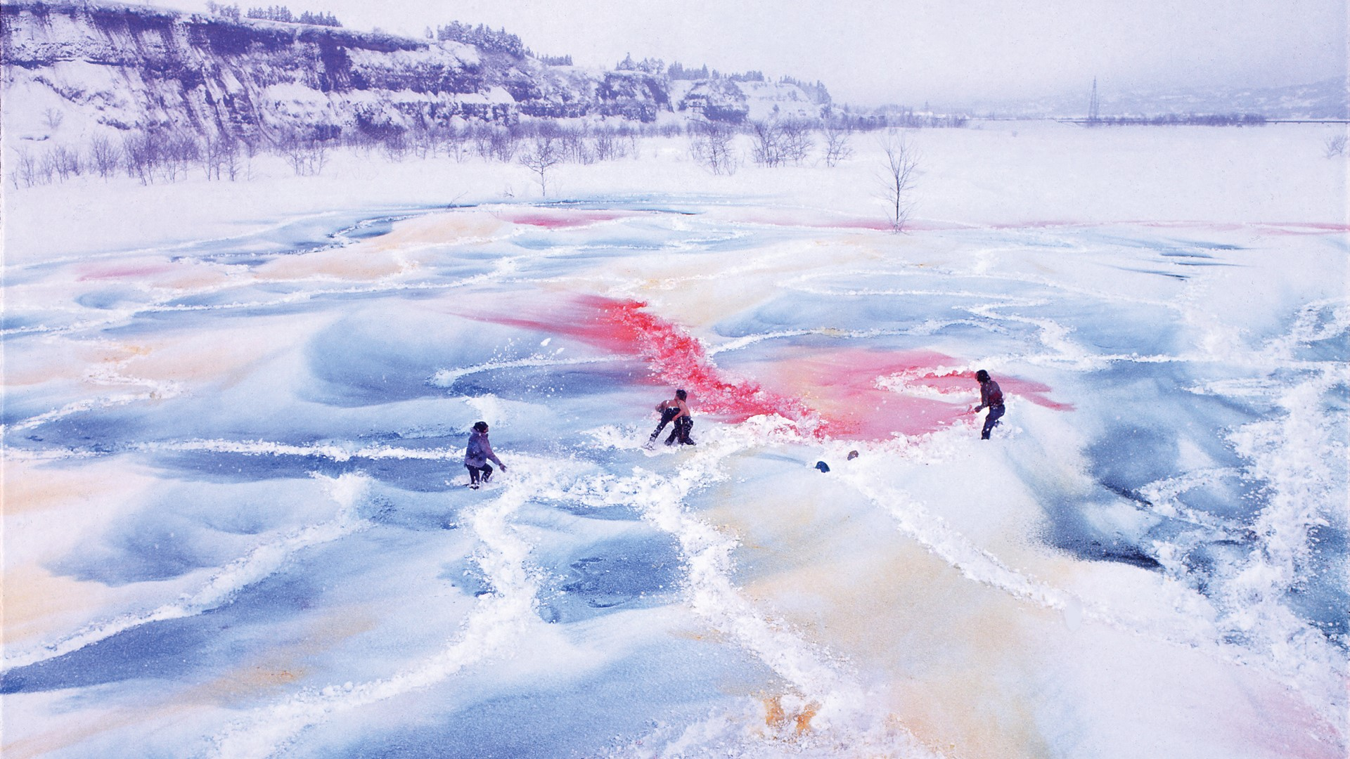 Radicalism in the Wilderness: Japanese Artists in the Global 1960s