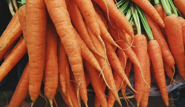A bunch of carrots hanging together.