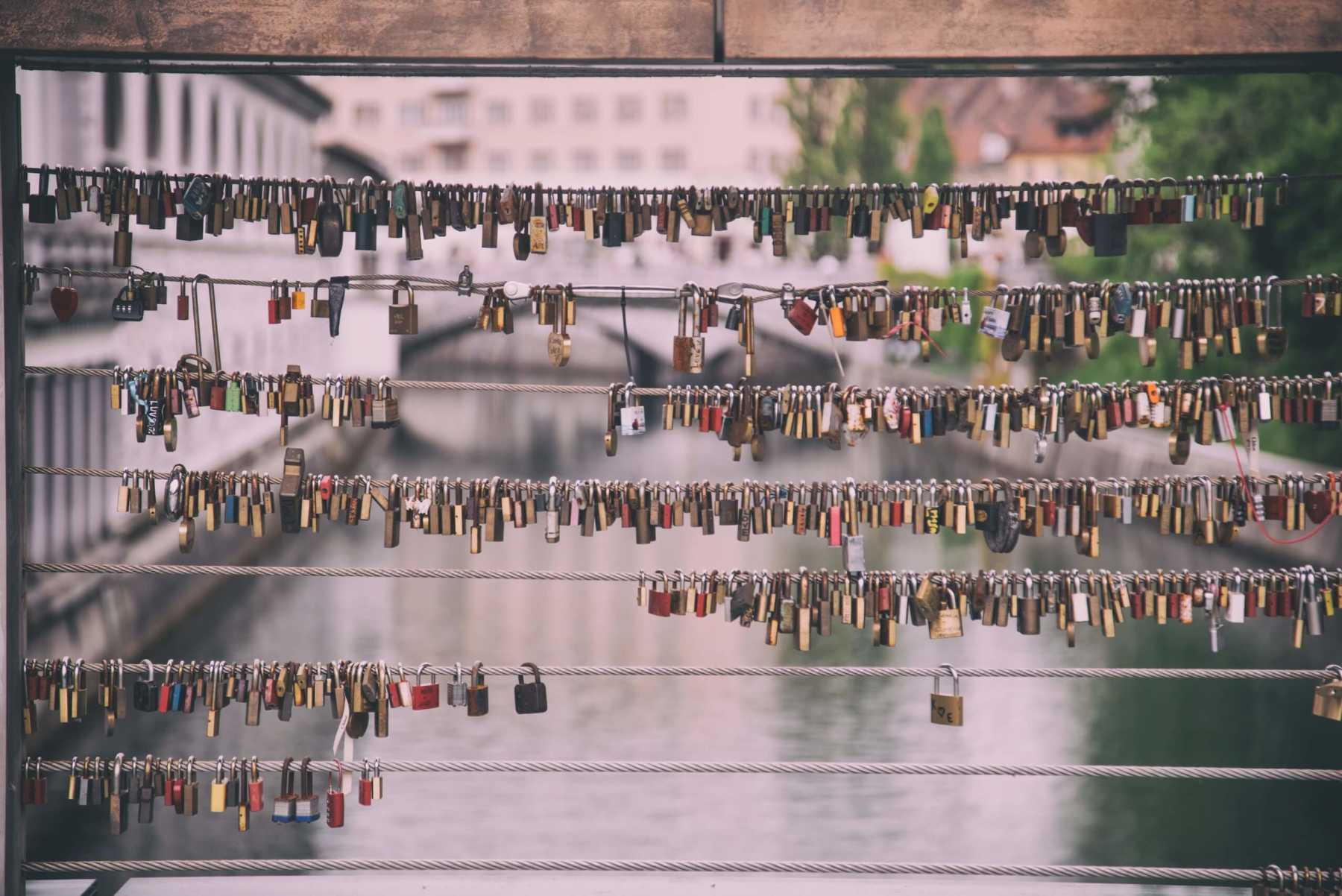 Dozens of padlocks attached to a bridge.