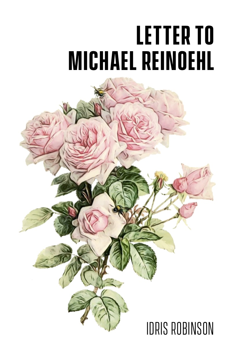 Cover Image for Letter to Michael Reinoehl